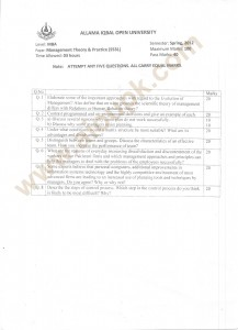 MBA Management Theory Practice papers