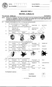 Biology objective MCQ's paper 2014 for class 9th