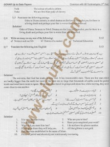 objective and subject Past paper of DAE english with solution